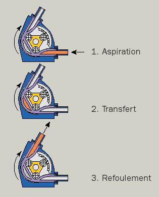 schéma d'une pompe péristaltique